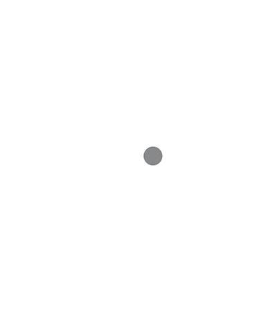Chaski Global